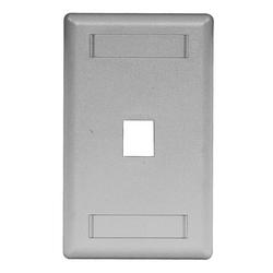 Plate, Wall, Flush, 1-G, 1Port, Gray