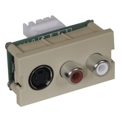 iStation Module, S-Video, RCAComponent, 110 Termination, 1.5-Unit, Almond