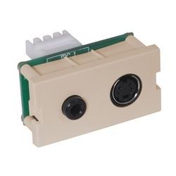 iStation Module, S-Video, 3.5 MM StereoJack, 110 Termination, 1-Unit, Light Almond