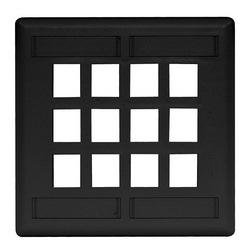 Plaque, mur, Flush, 2-G, 12Port, noir