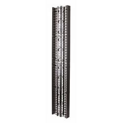 """Cage de gestion de câble Vertical standard avec couvercle, 3,75 x 13,17 """"x 8', recto-verso, noir"""