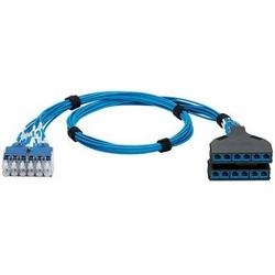 Harnais de Port du Switch QN, Cat 6 28AWG bleu UTP CM/LSZH câble, BU 12-Pack Plug Pack à Cassette pré résilié avec Jacks bleus, 5 ft