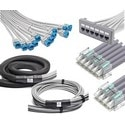 Cable Assembly, Solid, Cat 6, U/UTP, LSZH, 12 Link, 360 1100 Evolve Module Connector, Left to Right Orientation, Copper Conductor, 60' Length, White Jacket