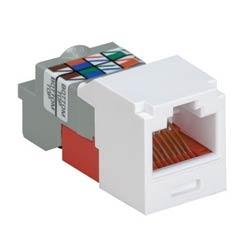 Jack Module, Category 5e, UTP, 8-Position 8-Wire, Universal Wiring, TG Avaya Style, Orange