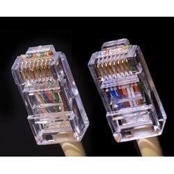 GEM Electronics CAT 5/6 Connector, Male, 50 Pack - (CAT5-HSP)