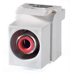 Keystone Insert, Audio/Video, RCA to RCA, Red Insulator, White