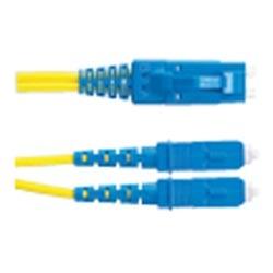 Patch Cord FJ Plug To SC 9µm Duplex 10m