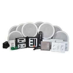 Intercom and Audio Kit, 100 Watt Speaker, Enclosure/Ceiling/Electrical Box Mount, Brushed Stainless
