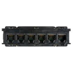 Module, Distribution, 6 Port, UTP, Category 6, Black