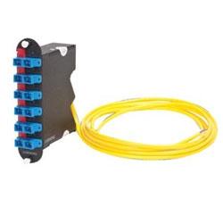 Closet Connector Housing (CCH) Module, pigtailed, SC connectors, Duplex, UPC, 12 fiber, Single-mode (OS2)