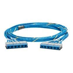 QN Cable Assembly, Category 6, CMR, Blue UTP Cable, Cassette to Cassette, 70ft
